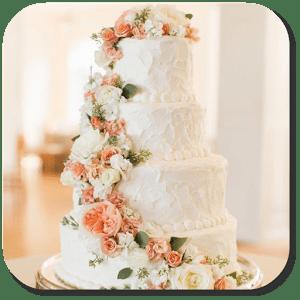 Wedding Cakes APK İndir - Android Düğün Pastası Uygulaması